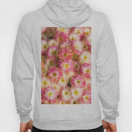 Pink and Yellow Flower Pattern (Color) Hoody