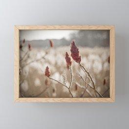 Sumac In Burnt Sienna, Namskaket River Framed Mini Art Print
