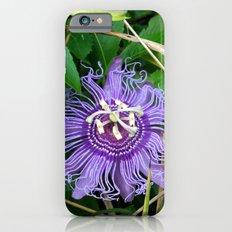 Passion vine flower Slim Case iPhone 6s