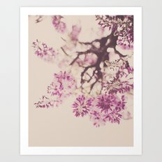 Purple Dreams Art Print