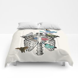 Anatomy 101 - The Thorax Comforters