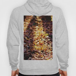 As The Leaves Fall, So Too, Does the Sun Hoody