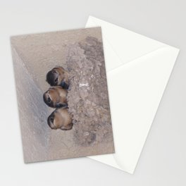 Three Baby Swallows are Poised to Leave the Nest Stationery Cards