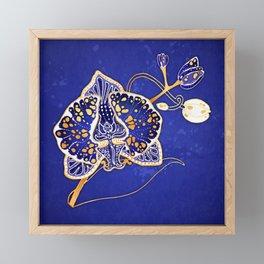Egyptian Blue :: Orchid Framed Mini Art Print