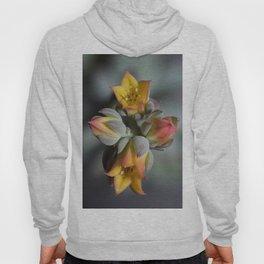 Succulent Blossom Hoody
