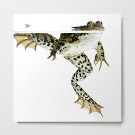 frog surfacing Metal Print