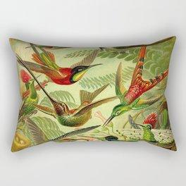 HUMMINGBIRD COLLAGE- Ernst Haeckel Rectangular Pillow