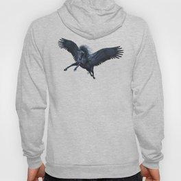 Black Pegasus Hoody