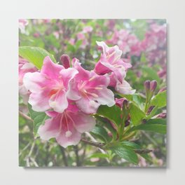 454 - Flowers Metal Print