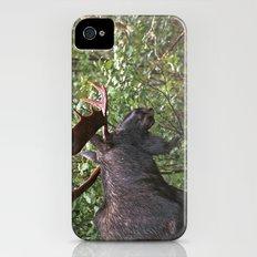 Bull Moose iPhone (4, 4s) Slim Case