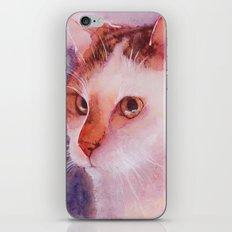 Soft fur iPhone & iPod Skin