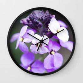 Dame's Rocket Flowering Wall Clock