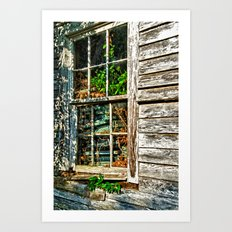 Overgrown Behind the Window Art Print