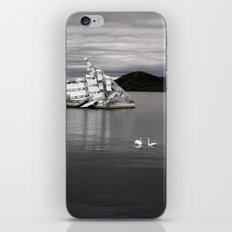 Swans And Glass iPhone & iPod Skin