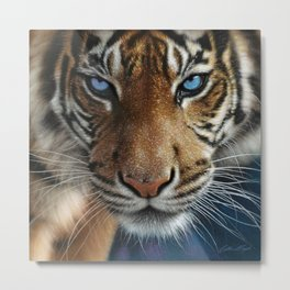 Tiger - Blue Eyes Metal Print