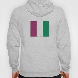 Flag of the suffragettes Hoody