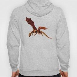 Dragon Attack Hoody