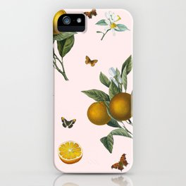 Oranges and Butterflies in Blush iPhone Case