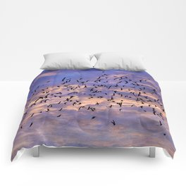 Flight of the Black Birds Comforters