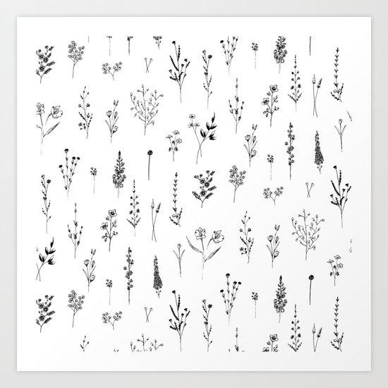 Wildflowers by aniiiz