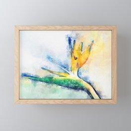 Bird Of Paradise Watercolor Art Framed Mini Art Print