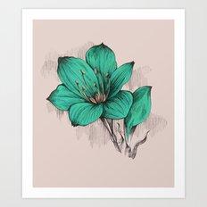 Green Poppy Art Print