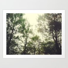 One Misty Morning Art Print