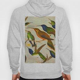 Translate Album de aves amazonicas - Emil August Göldi - 1900 Colorful Hummingbirds Hoody