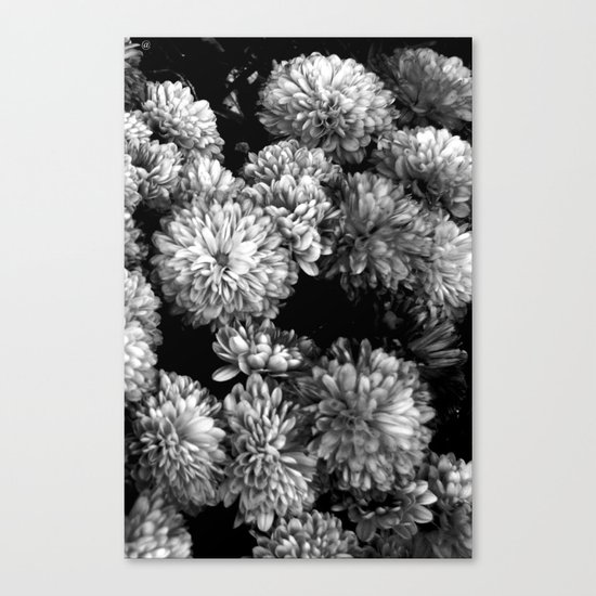 white gold (w/straight border) Canvas Print