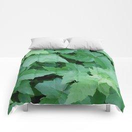Settled Comforters