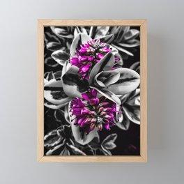 BOTANICA Framed Mini Art Print