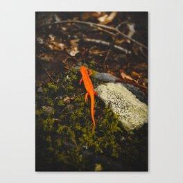 Neon Newt - Neon by Nature - @zekekitchen Canvas Print