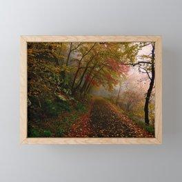 Hiking Trail 1 Framed Mini Art Print