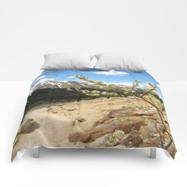 Mountain Meadow Comforters