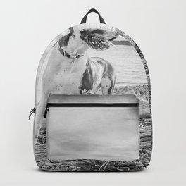 Harlequin Beach Sunset Backpack