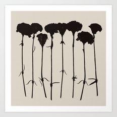 carnations 1 Art Print