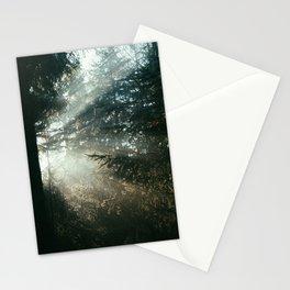 sunray madness Stationery Cards