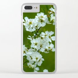 Apple tree blossom Clear iPhone Case