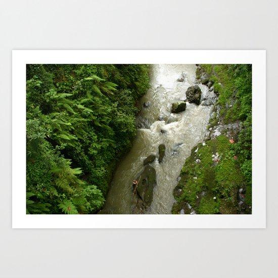 Jungle Floor Art Print