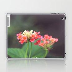 Tiny Lovelies Laptop & iPad Skin