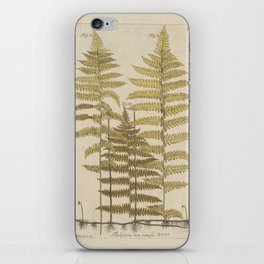 Vintage Fern Botanical iPhone Skin