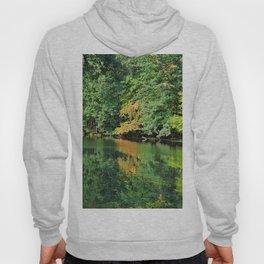 Evergreen Reflections- vertical Hoody