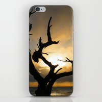 arya stark iPhone & iPod Skins featuring Stark by Right As Rain