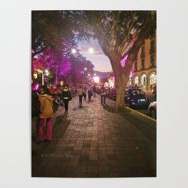 Parque Juarez Poster
