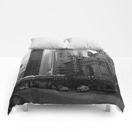 Chicago, IL Comforters