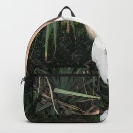 Vacation Postcard Backpack