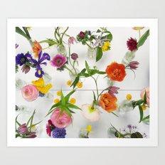Spring Flowers - JUSTART Art Print
