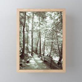 In the forest Framed Mini Art Print