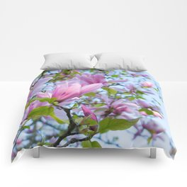 Magnolia trees in bloom  Comforters