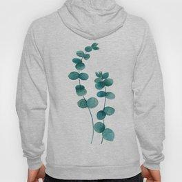 green eucalyptus watercolor Hoody